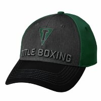 Кепка TITLE BOXING TITLE T 3D LOGO FITTED CAP